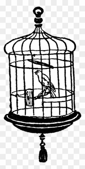 Cage clipart black and white. Download free png bird