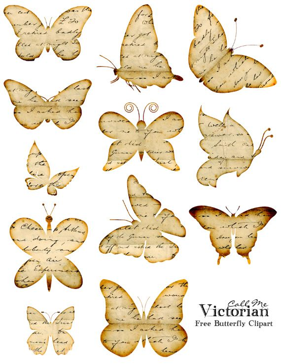 Cage clipart butterfly. Free images distressed handwriting