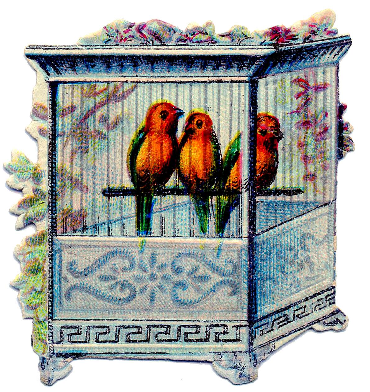 Victorian clip art birds. Cage clipart chicken