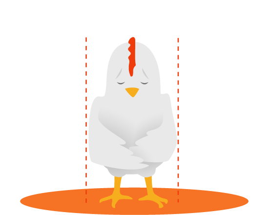 Sign now to ban. Cage clipart chicken
