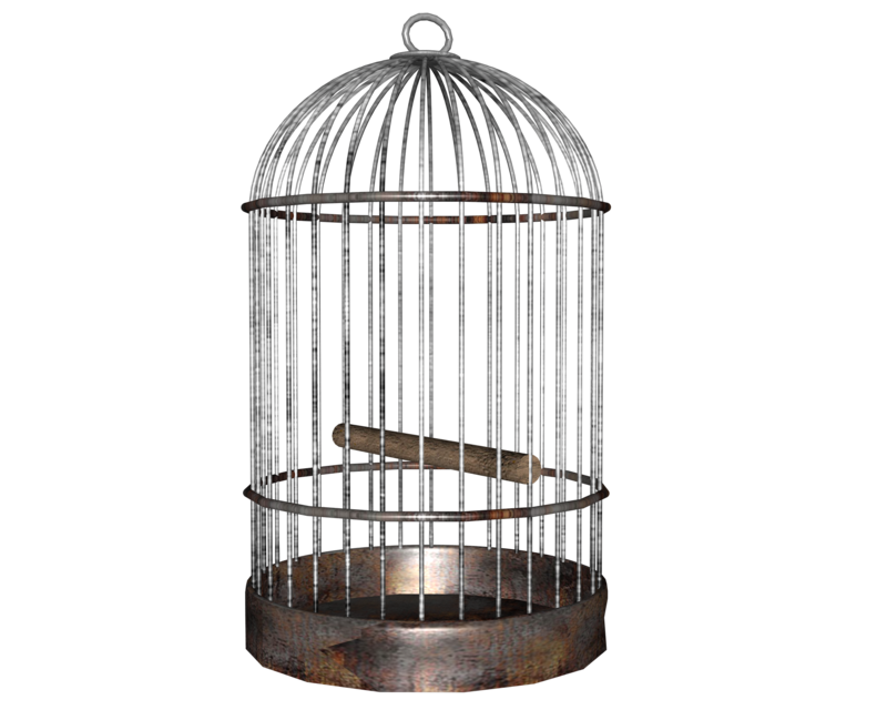 Bird png images free. Cage clipart clear background