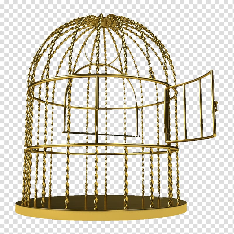 Birdcage golden pattern iron. Cage clipart clear background