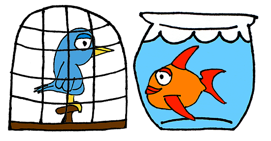 Birdcage or buying a. Fishbowl clipart cage