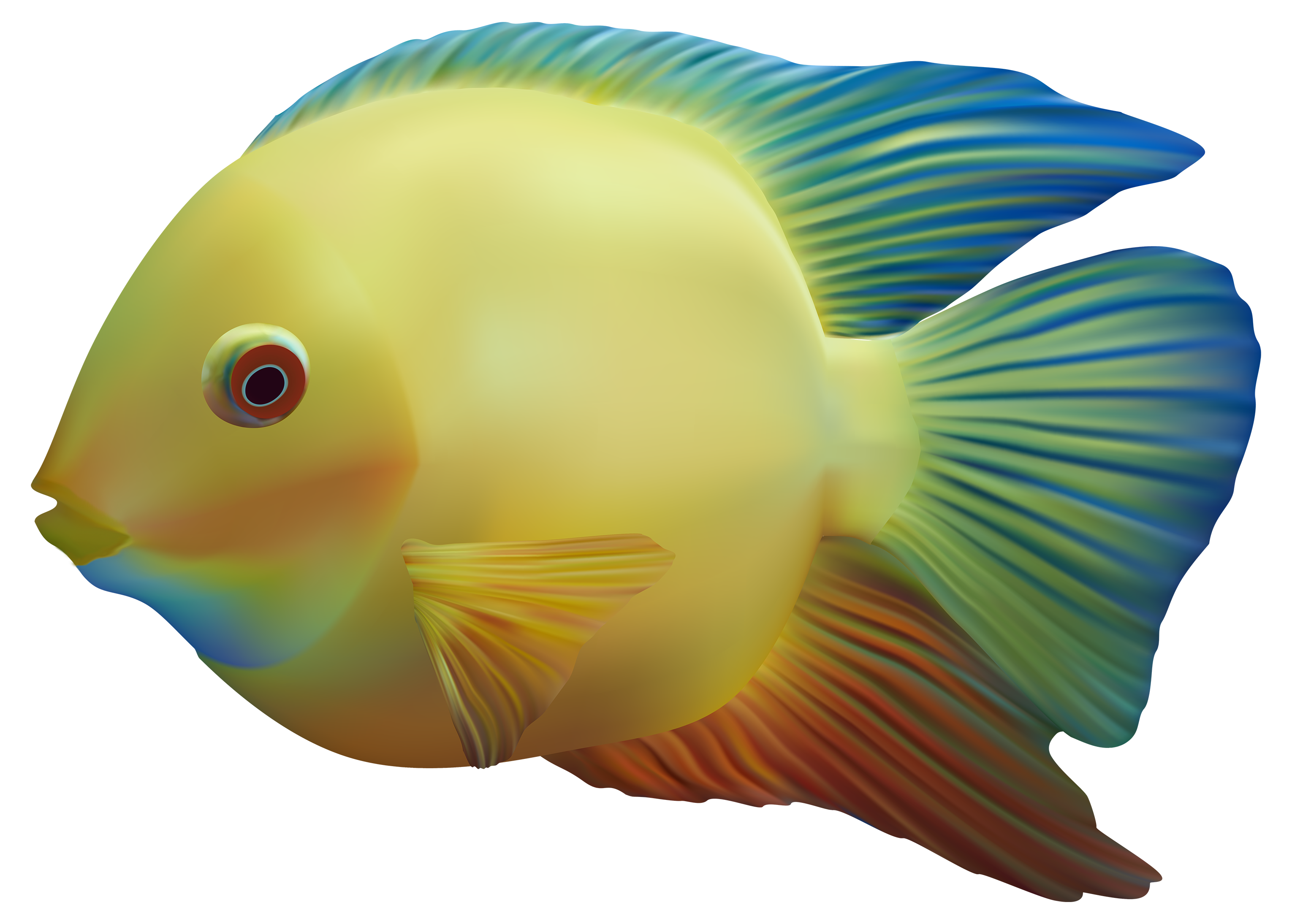 Fish png image free. Tuna clipart transparent background