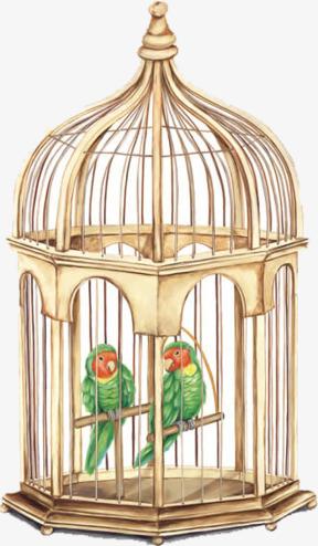 Cage clipart gold bird. Golden green birdcage png