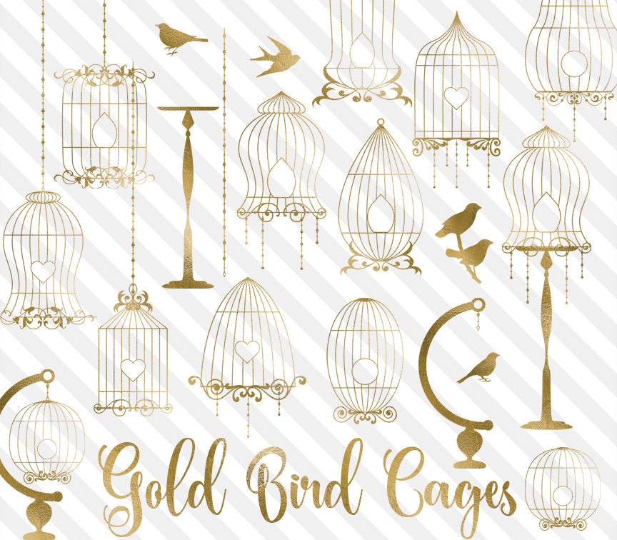 cage clipart gold bird