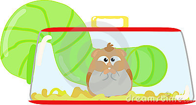 Free cliparts download clip. Hamster clipart cage clipart