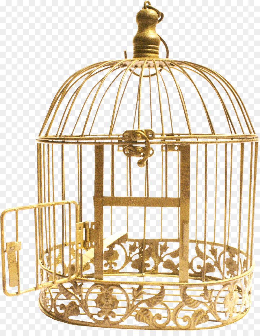 Cell bird download png. Cage clipart jail