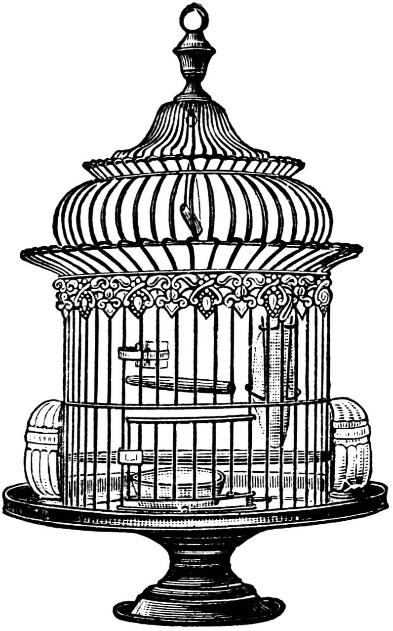 Cage clipart line. Vintage bird