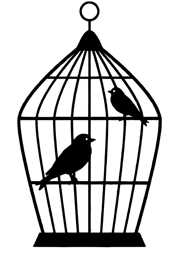 Bird drawing illustration . Cage clipart line