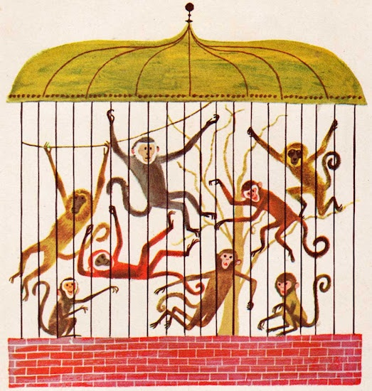 Cage clipart monkey cage.  best primate in