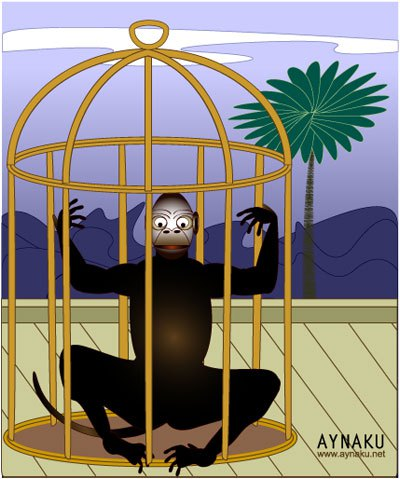 Animal rights aynaku animalrights. Cage clipart monkey cage