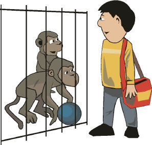 Cage clipart monkey cage. The social human nature