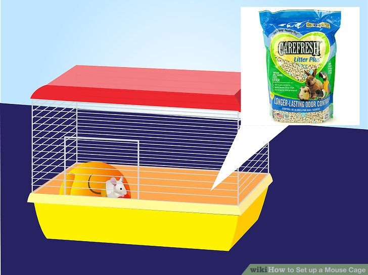 How to set up. Cage clipart mouse cage