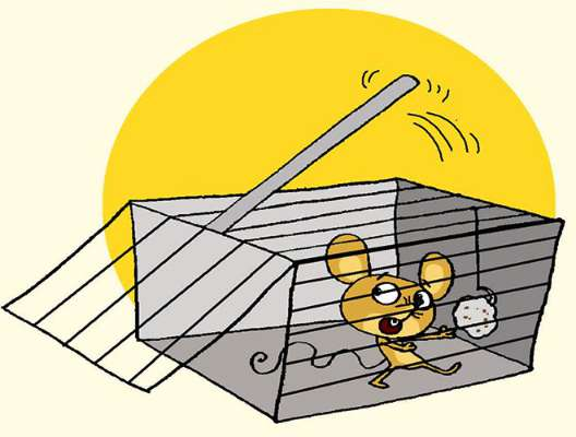 Cage clipart mouse cage. Mice in a champak