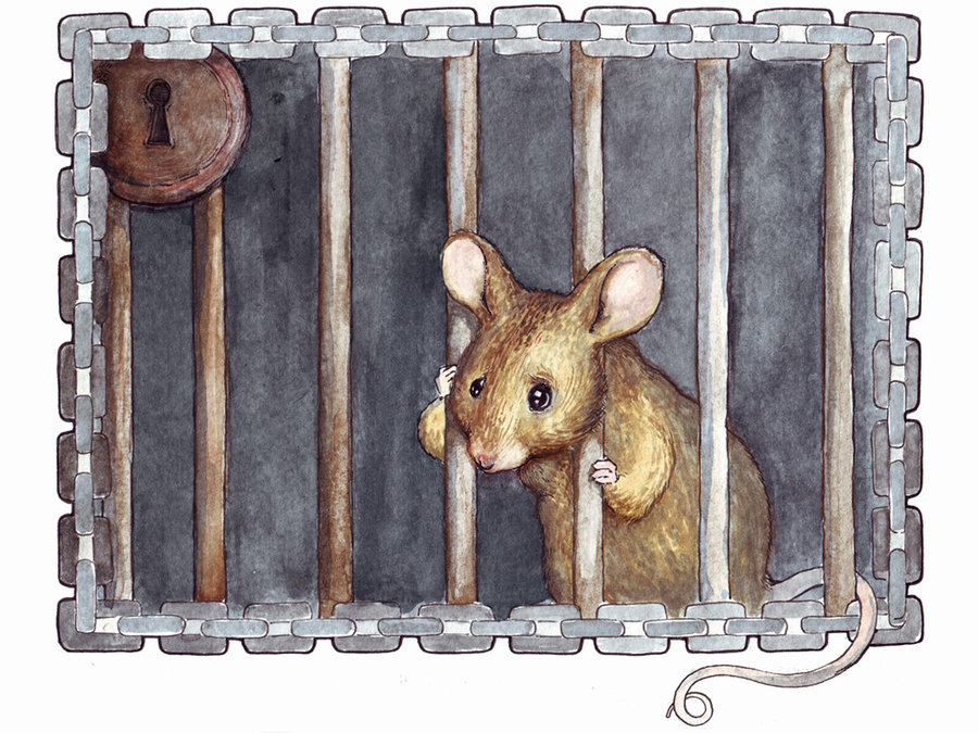 Cage clipart mouse cage. Early animal rights poem
