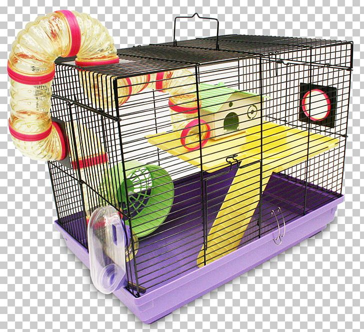 Hamster guinea pig rodent. Cage clipart mouse cage