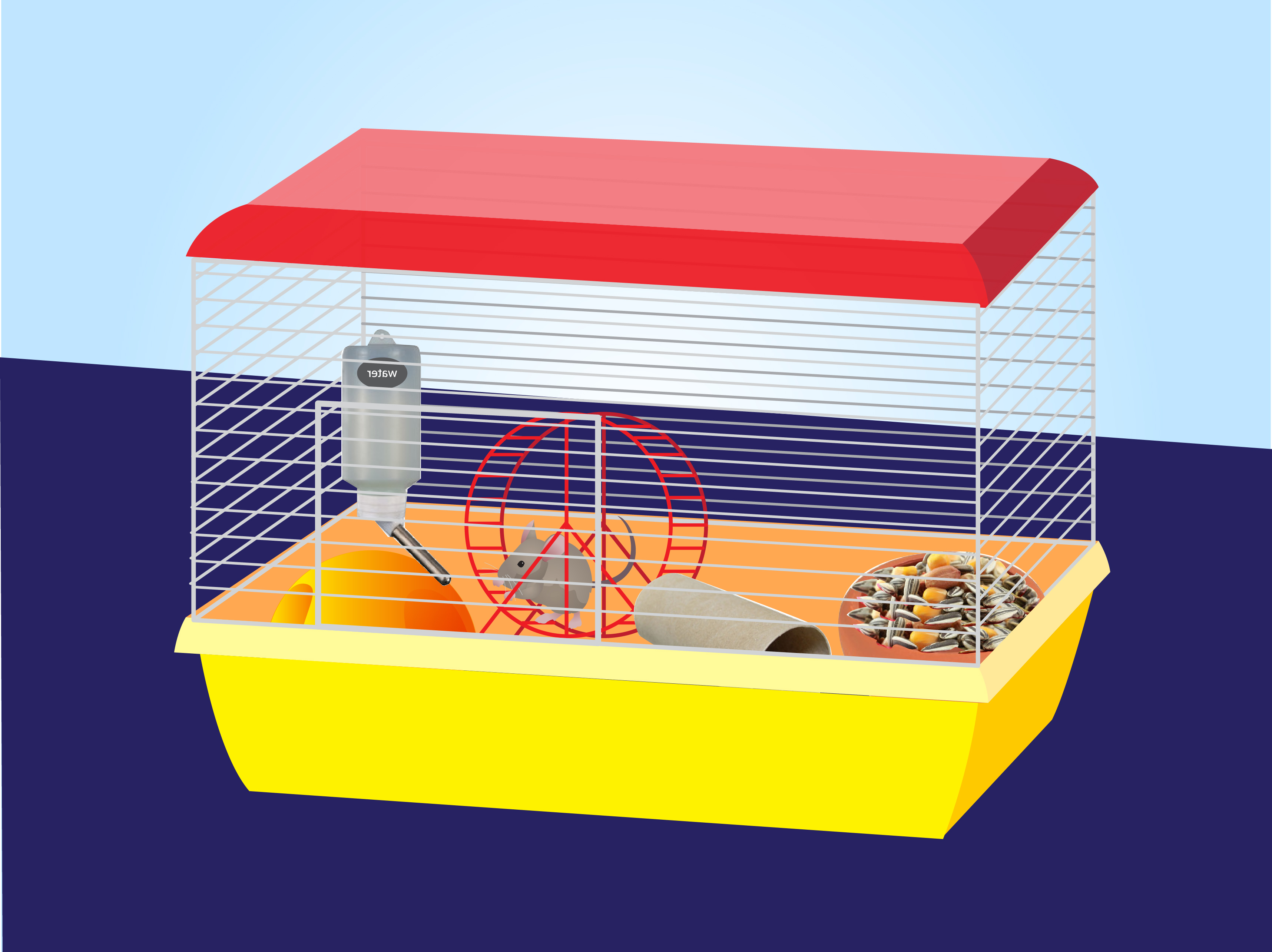 Cage clipart mouse cage. How to set up