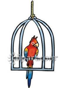 A on metal swing. Cage clipart parrot