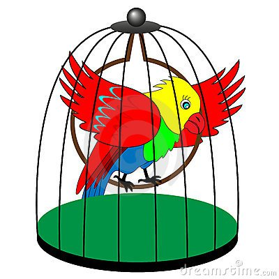 Cage clipart parrot. Talking humor stories from