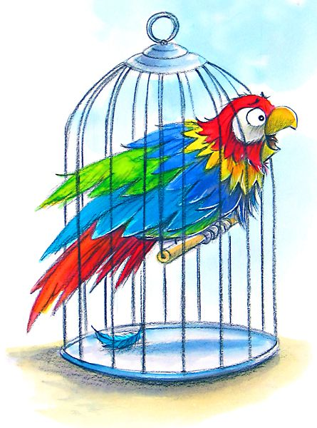 collection of in. Cage clipart parrot