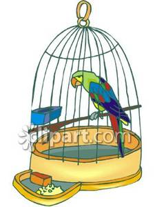 In a small panda. Cage clipart parrot