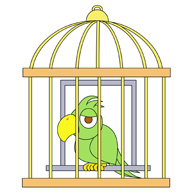 Cage clipart parrot. Search results for bird
