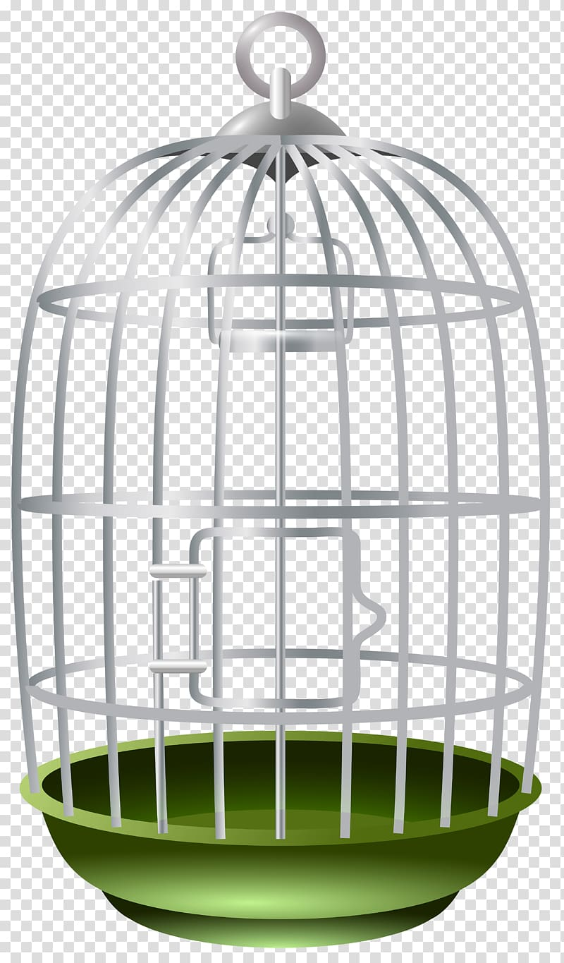 Lovebird birdcage bird transparent. Cage clipart parrot