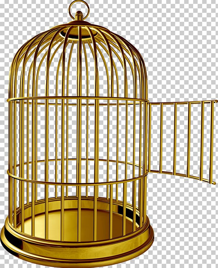 Cage clipart parrot. Birdcage png animals bird
