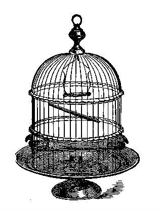 Cage clipart pig. Vintage clip art antique
