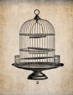 Vintage birdcage black and. Cage clipart printable
