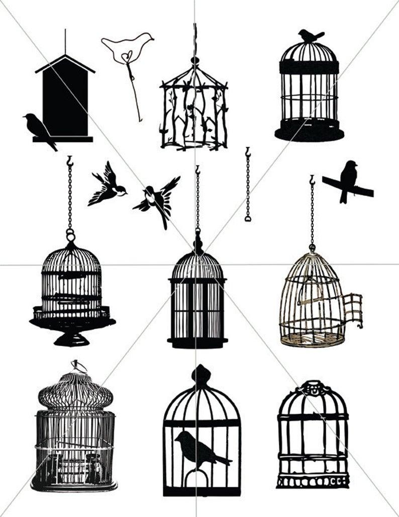 Birdcage images bird vectors. Cage clipart printable