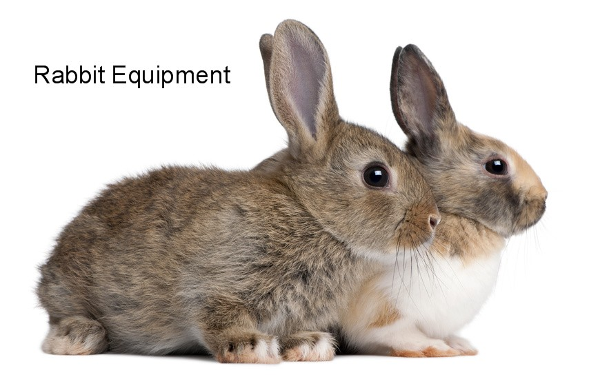 Equipment jpg. Cage clipart rabbit cage