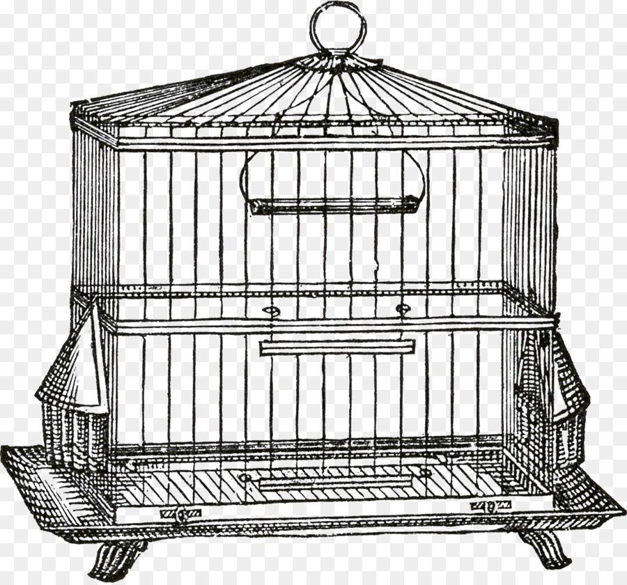 Cage clipart sketch. Birdcage domestic canary clip