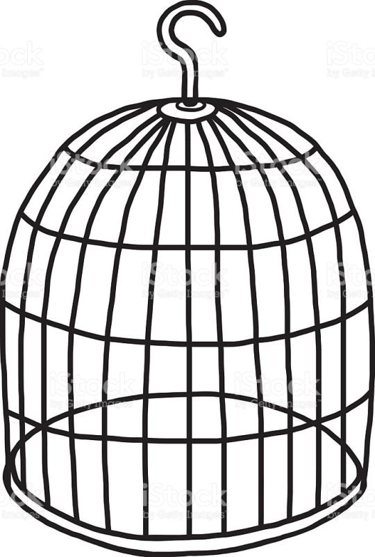 Bird drawing at getdrawings. Cage clipart sketch