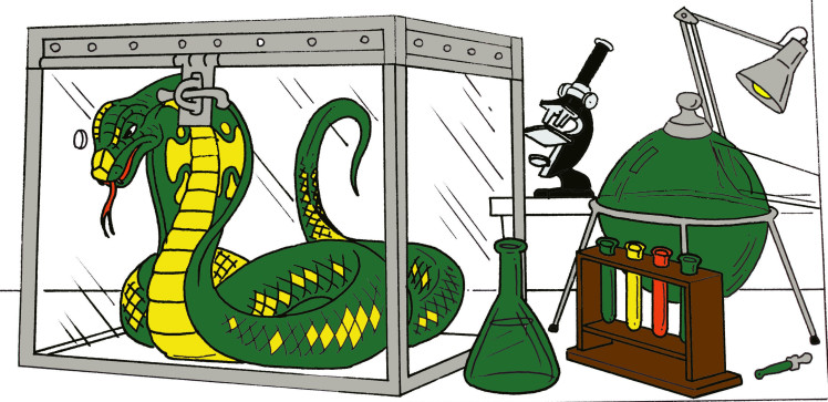 Willi becomes a skeleton. Cage clipart snake