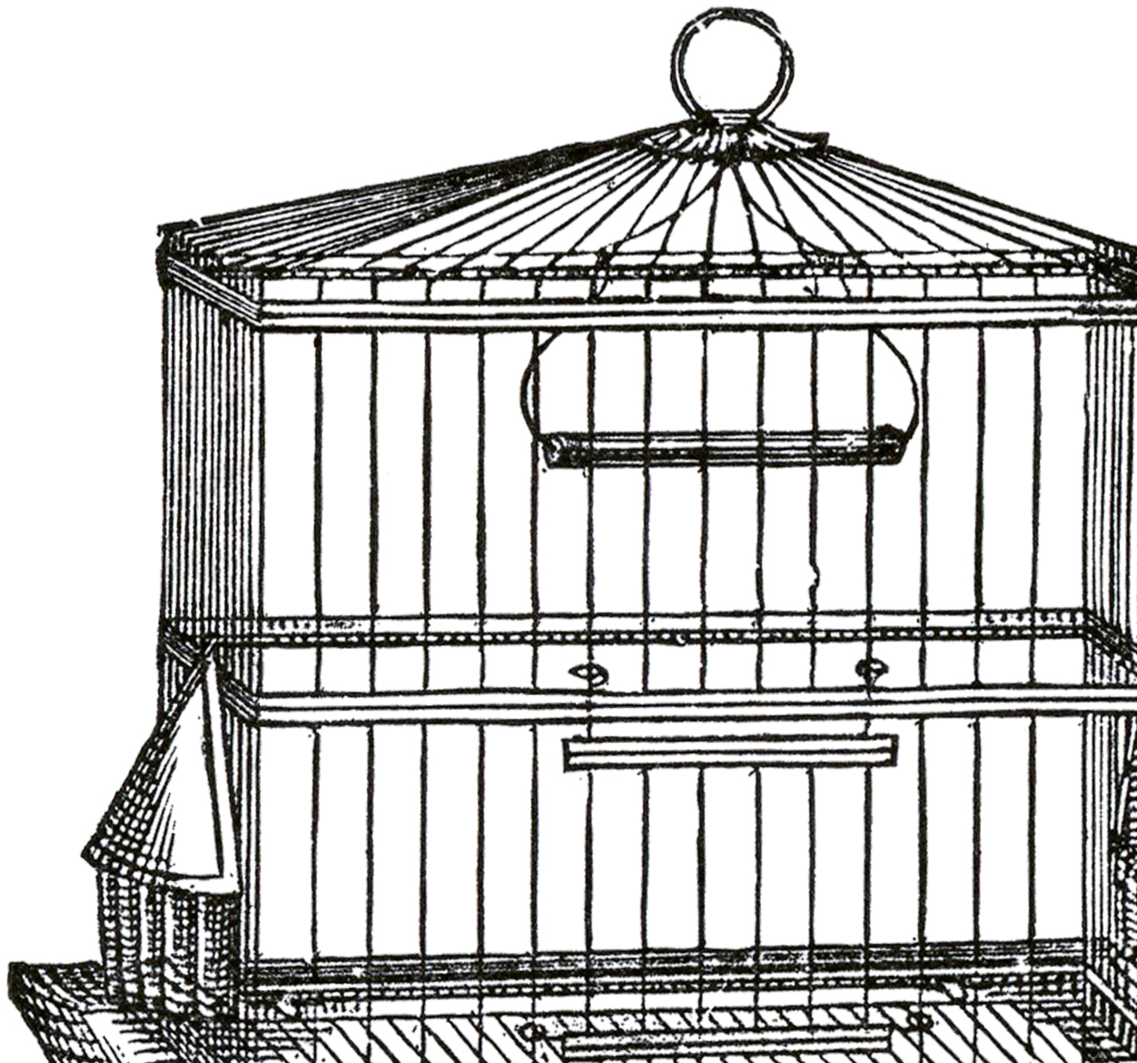 Cage clipart square. Vintage wire bird image