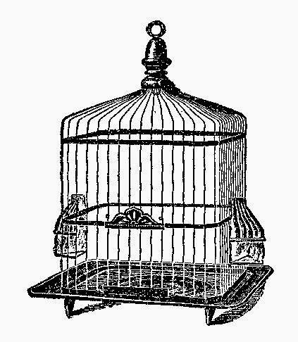 Antique images free digital. Cage clipart square