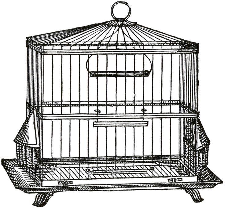 best vintage images. Cage clipart square