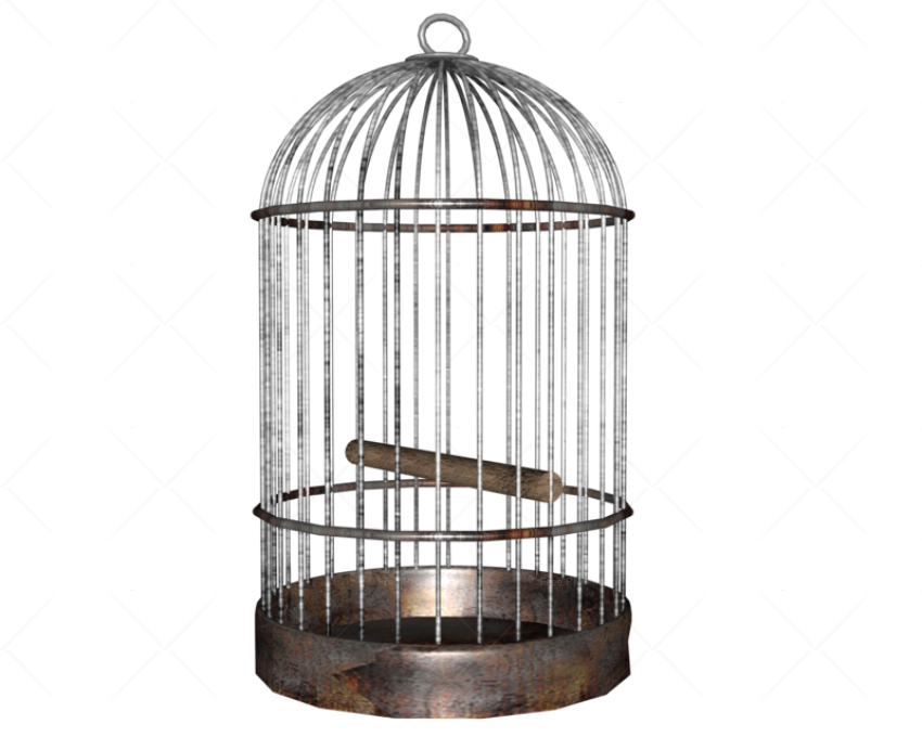 Bird png image purepng. Cage clipart transparent background