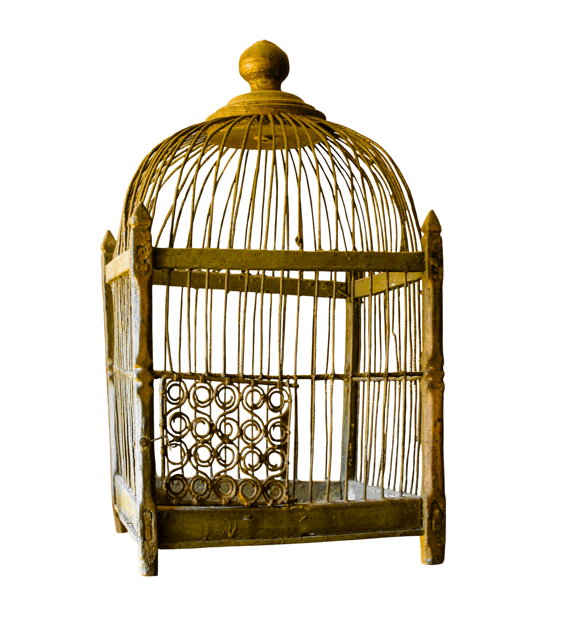 Cage clipart transparent background. Bird png stickpng