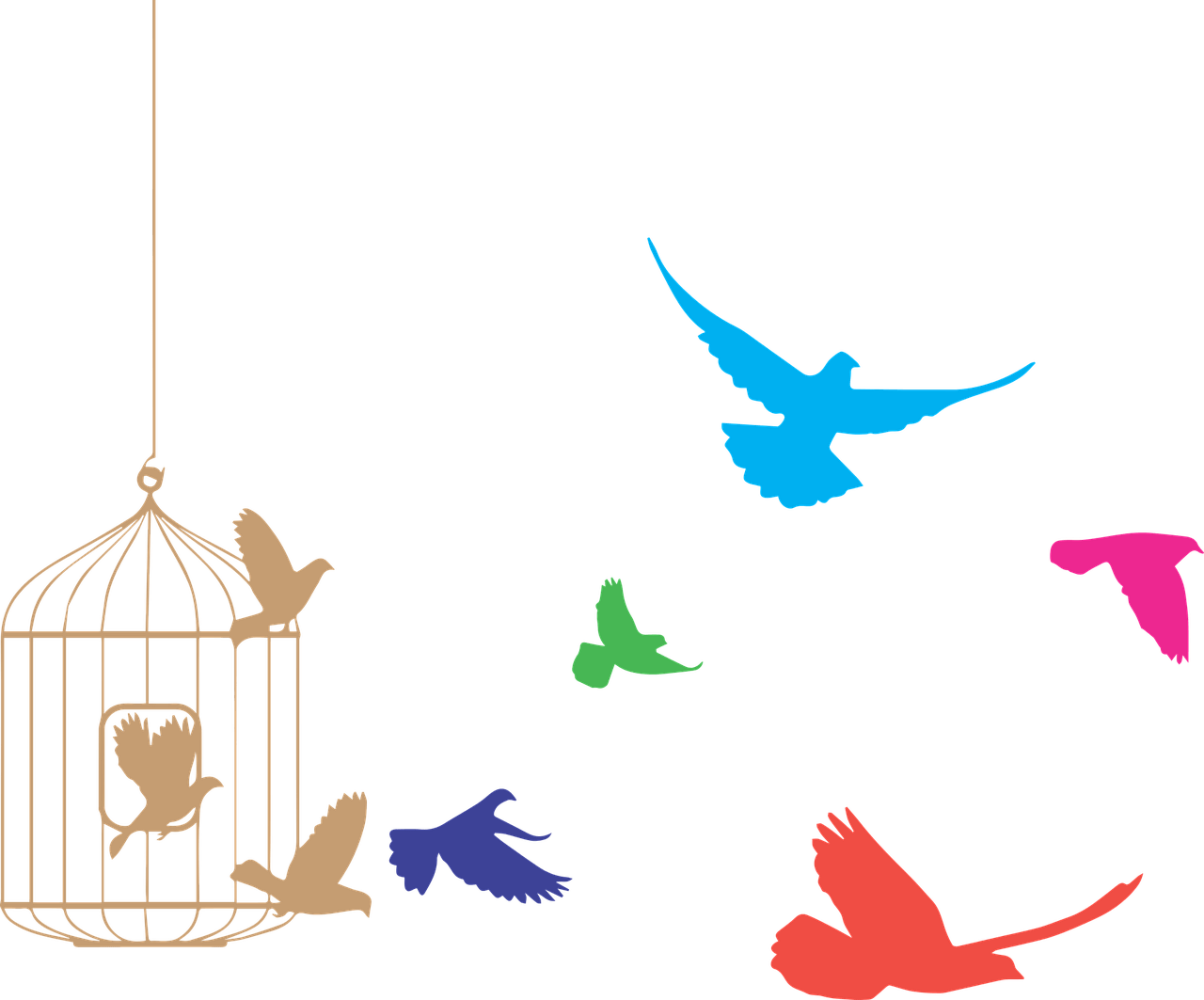 Birds flying from png. Cage clipart transparent background