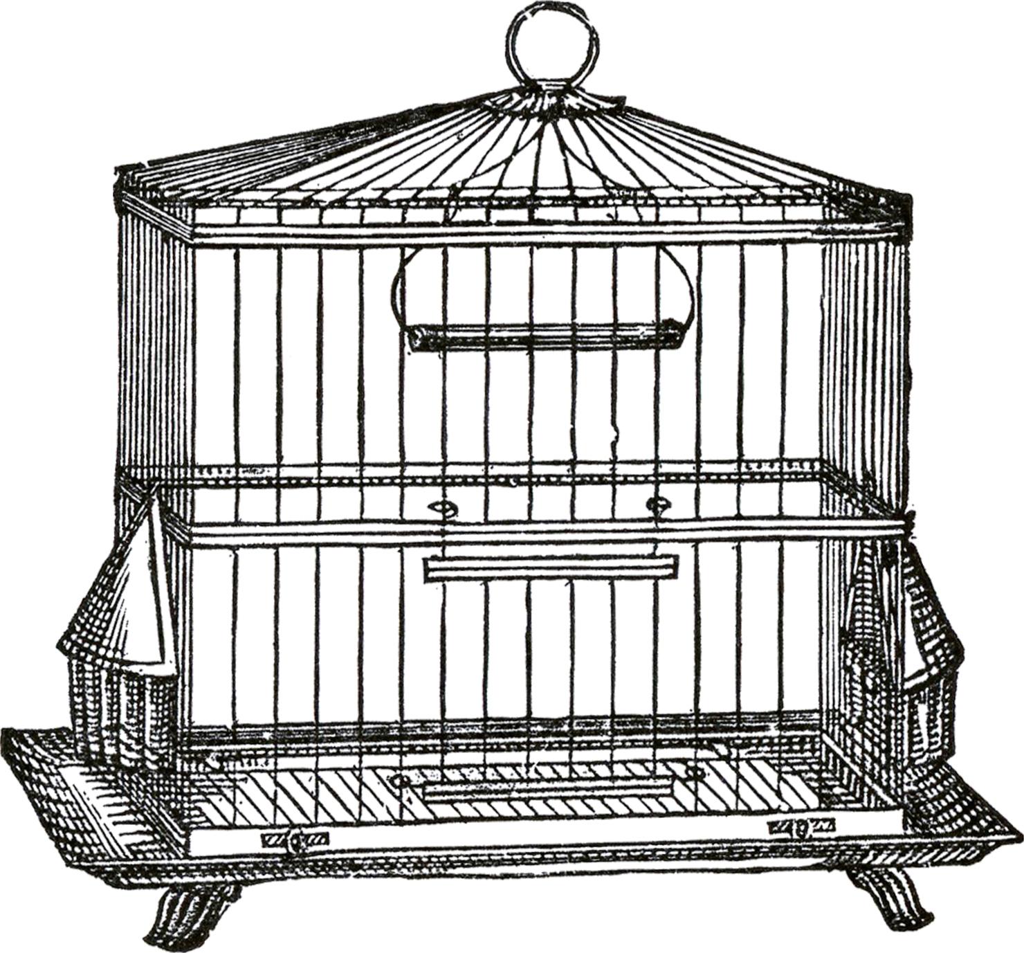 Graphics fairy birdcage trans. Cage clipart transparent background