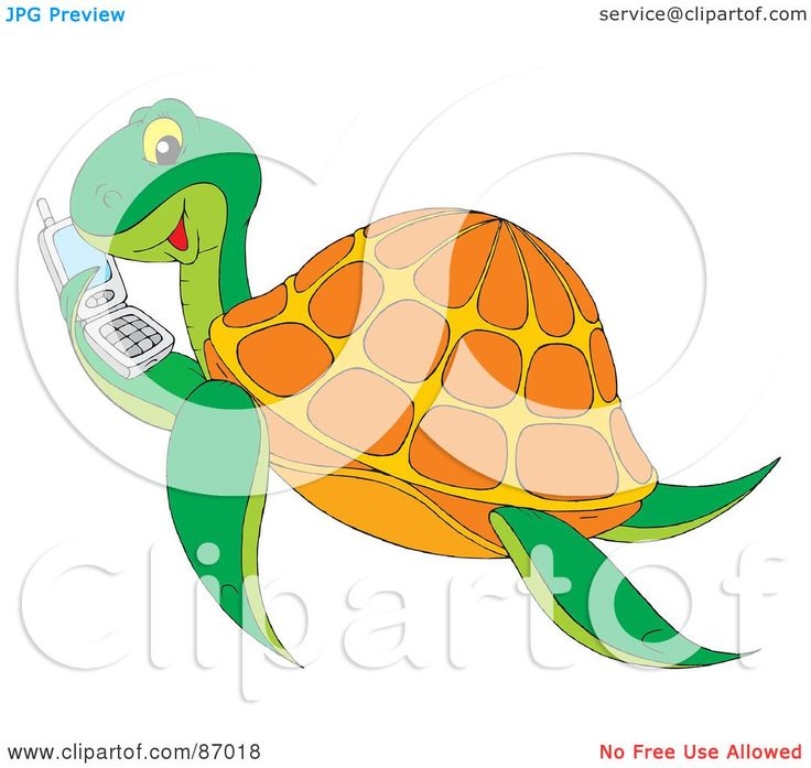 best turtles images. Cage clipart turtle