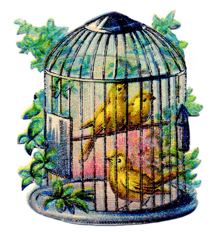 best clip art. Cage clipart victorian