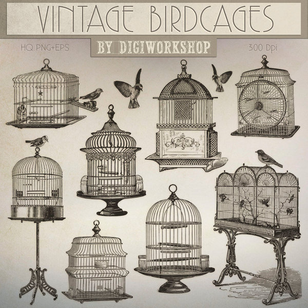 Cage clipart vintage. Birdcages clip art by