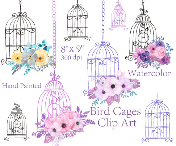 Watercolor floral bird elements. Cage clipart wedding