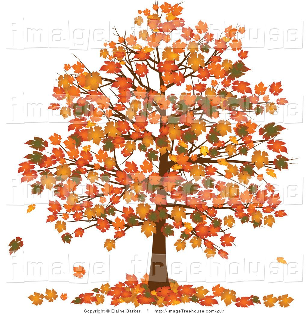Tree wallpapers gallery clip. Calendar clipart autumn