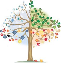 Calendar clipart seasons. Four trees clip art