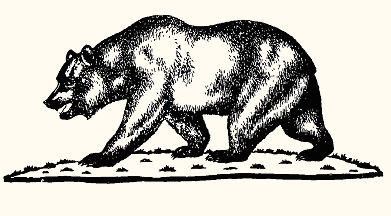 State of drawing at. California clipart bear grizzly california